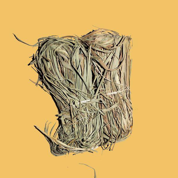 Lemon Grass Citronnelle